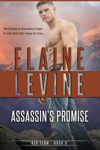 Assassin's Promise - Elaine Levine