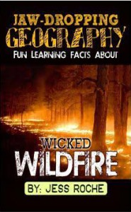 Jaw-Dropping Geography: Fun Learning Facts About Wicked Wildfires: Illustrated Fun Learning For Kids (Volume 1) - Jess Roche