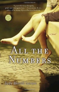 All the Numbers: A Novel - Judy Merrill Larsen