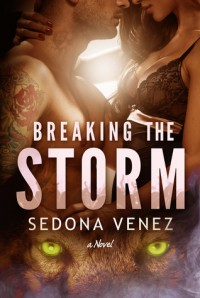 Breaking the Storm - Sedona Venez