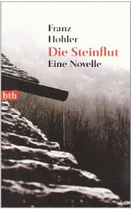 Die Steinflut: Eine Novelle - Franz Hohler