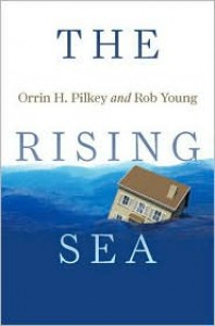 The Rising Sea - Orrin H. Pilkey,  Rob Young