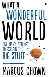 What a Wonderful World: One Man's Attempt to Explain the Big Stuff - Marcus Chown