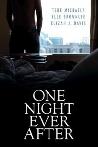 One Night Ever After - Elle Brownlee, Elizah J. Davis, Tere Michaels