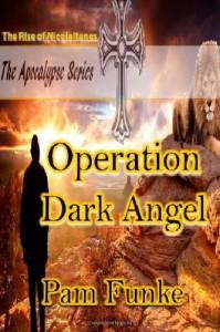 Operation Dark Angel: The Rise of Nicolaitanes - Pam Funke