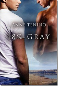 18% Gray (Task Force Iota #1) - Anne Tenino
