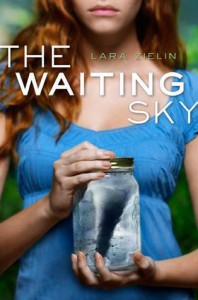 The Waiting Sky - Lara Zielin