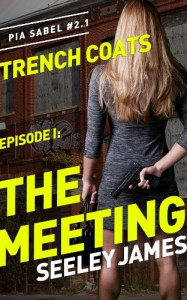 The Meeting - Seeley James