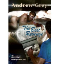 The Best Revenge - Andrew  Grey