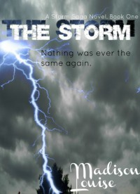 The Storm - Madison Louise