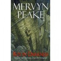 Boy in Darkness - Mervyn Peake,  P.J. Lynch