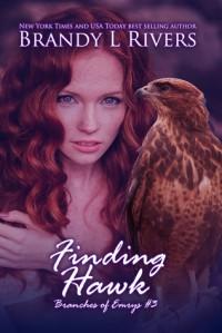 Finding Hawk - Brandy L. Rivers