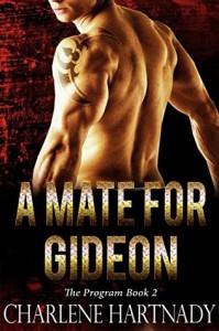 A Mate for Gideon - Charlene Hartnady