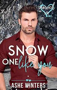 Snow One Like You - Ashe Winters