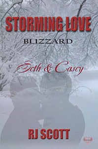 Seth & Casey (Storming Love 2 Blizzard Book 3) - R.J. Scott