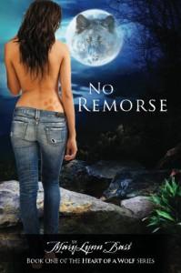 No Remorse - MaryLynn Bast