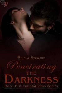Penetrating the Darkness - Shiela Stewart