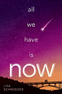 All We Have Is Now - Lisa Schroeder