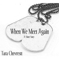 When We Meet Again - Tara Chevrestt
