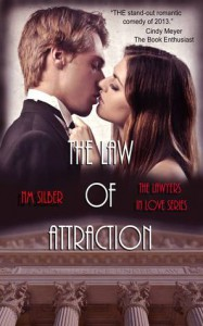 The Law of Attraction - N.M.  Silber