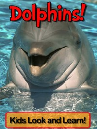 Dolphins! Learn About Dolphins and Enjoy Colorful Pictures - Look and Learn! (50+ Photos of Dolphins) - Becky Wolffe