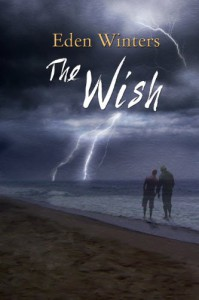 The Wish  - Eden Winters