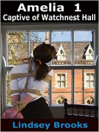 Captive of Watchnest Hall - Lindsey Brooks