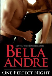 One Perfect Night - Bella Andre