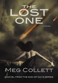 The Lost One - Meg Collett