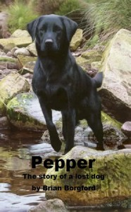 Pepper - Brian Borgford