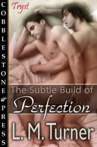 The Subtle Build of Perfection - L.M. Turner