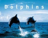 Dolphins - Tsuneo Nakamura, Randall Wells