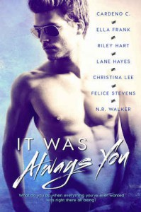 It Was Always You - Felice Stevens, N.R. Walker, Riley Hart, Cardeno C., Lane Hayes, Ella Frank, Christina Lee