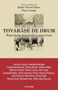 Tovarăşe de drum. Experienţa feminină în comunism - Radu Pavel Gheo, Dan Lungu