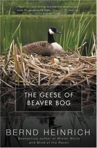 The Geese of Beaver Bog - Bernd Heinrich