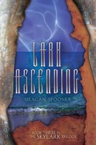 Lark Ascending - Meagan Spooner