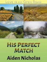 His Perfect Match - Aiden Nicholas