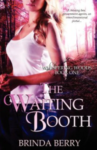 The Waiting Booth - Brinda Berry
