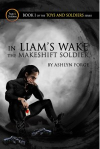 In Liam's Wake: The Makeshift Soldier (Toys and Soldiers, #1) - Ashlyn Forge