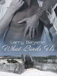 What Binds Us - Larry  Benjamin