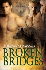 Broken Bridges - Cheyenne Meadows
