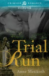 Trial Run - Anne Metikosh