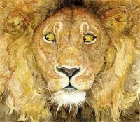 The Lion and the Mouse. Jerry Pinkney - Jerry Pinkney