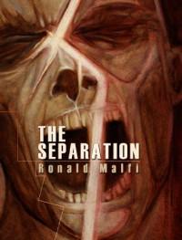 The Separation - Ronald Malfi