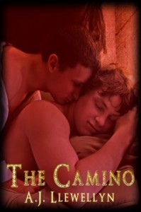 The Camino - A.J. Llewellyn