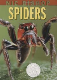 Spiders - Nic Bishop