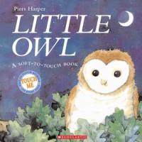 Little Owl - Piers Harper