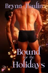 Bound for the Holidays - Brynn Paulin
