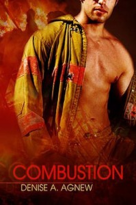Combustion - Denise A. Agnew