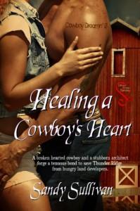 Healing a Cowboy's Heart - Sandy Sullivan